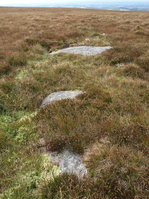 Granite on Lee Moor