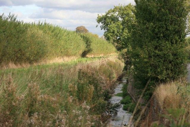 Ditch alongside the road
