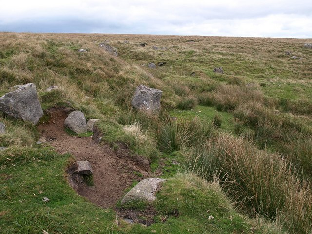 Gully near Yealm Head