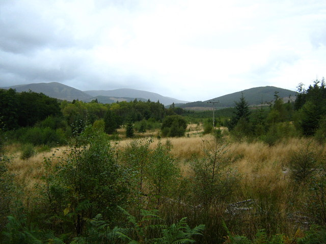 Scrub and woodland near Ardross