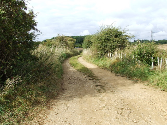 Old road from Seven springs, to Colesbourne Park.