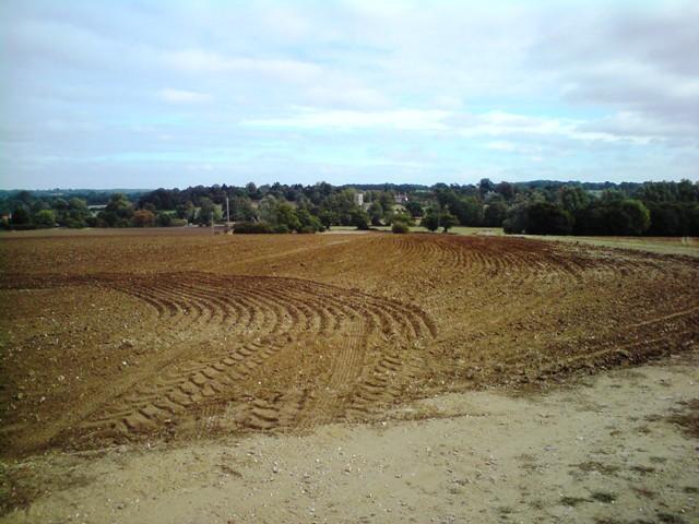 Farmland by Holly Lane
