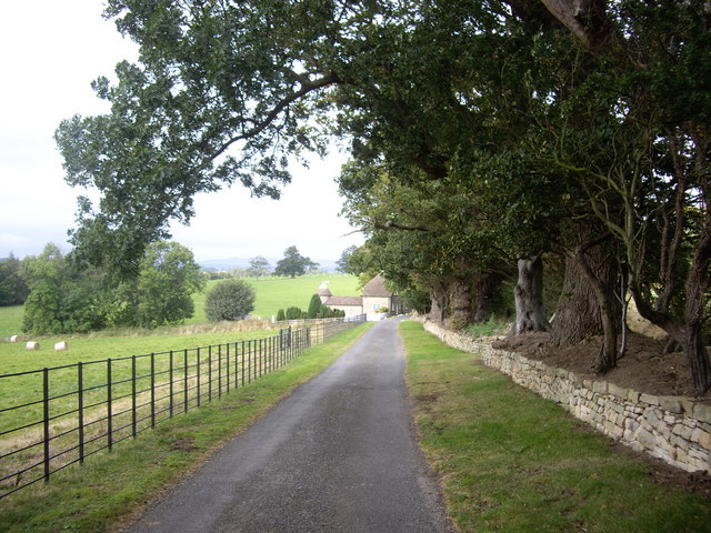 Approach to South Lodge (2009)