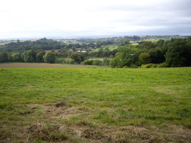View towards the A67 from Selaby road
