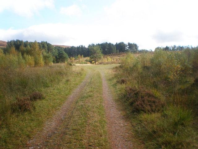 End of the track near Allt Phocaichain