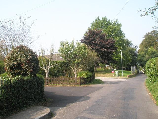 Early autumn in Little Shore Lane