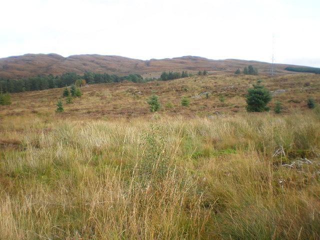 Moorland near Allt Phocaichain under Pylons