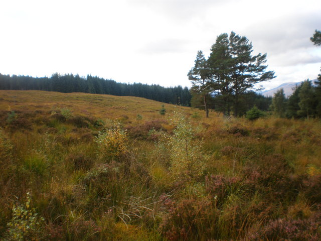 Moorland above Glen Moriston near Old Drovers Road looking West