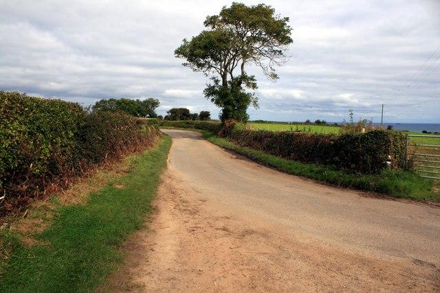 Road near Plas Lligwy, Anglesey