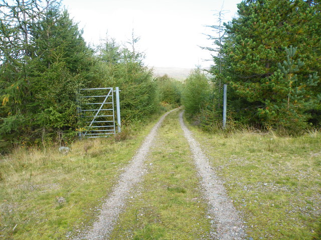 Track with Gate Crossing Old MilitaryRoad