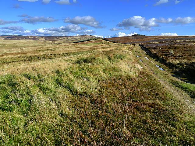 Track to Little Glen Shee