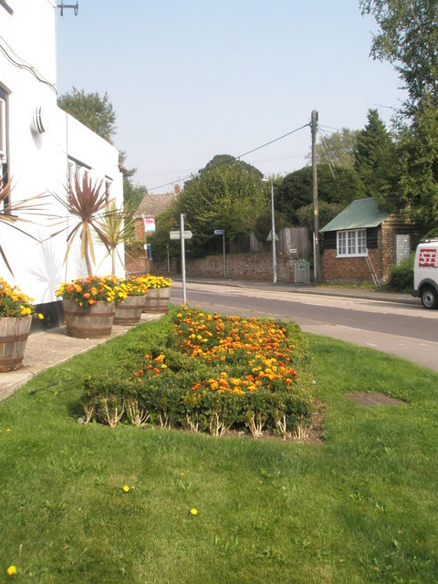 Flowerbed outside the Bishop's Waltham Tandoori