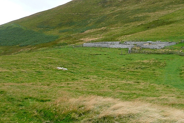 Sheepfold below Ring Chesters