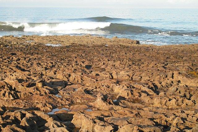 Wave cut platform, Reed Point