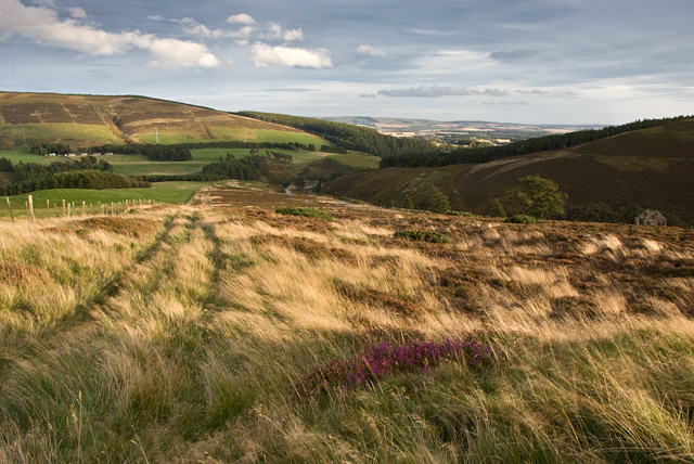 On Redstone Hill above Clatterin Brig