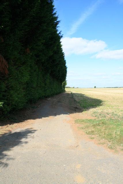 Bridleway across the fields