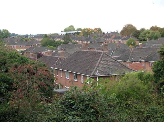 Lakenham roofscape