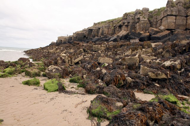 Collapsed sea cliff at Traeth Lligwy