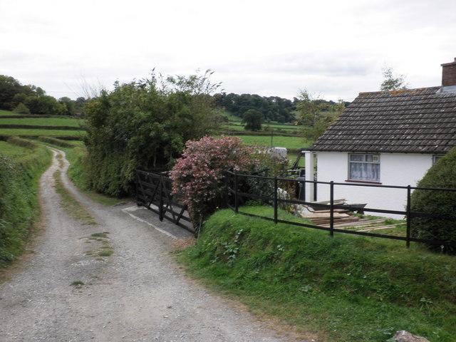 Brimley Corner