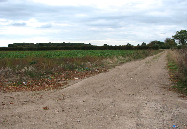Farm track running parallel with Kirby Road