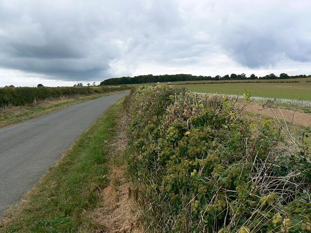 Pudlicote Lane, near Chipping Norton