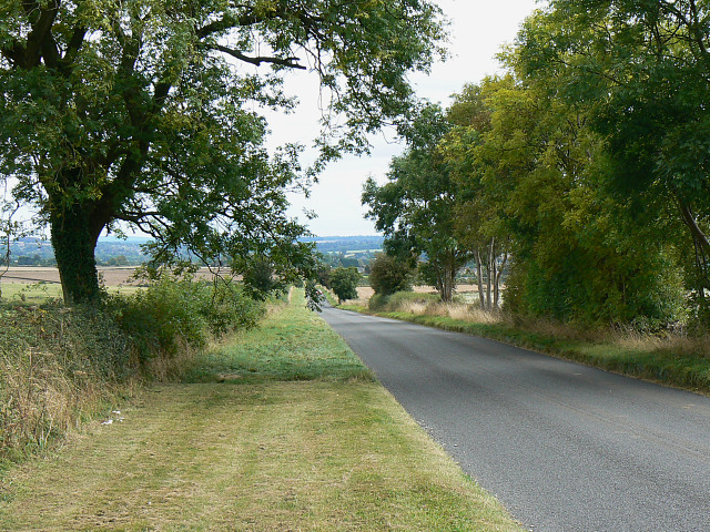 Trees along Chipping Norton Road, near Chipping Norton