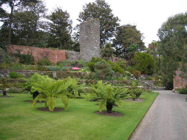 Castle Balzieland ruin in Logan Botanic Gardens