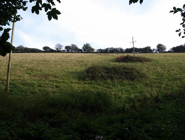 Hillside, East Buckland