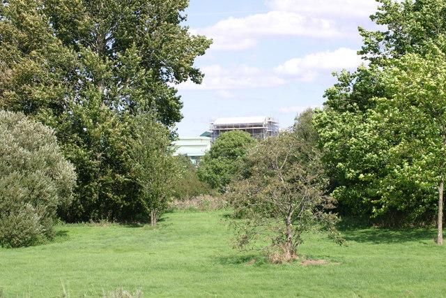 Open grassy area next to Fazeley Road  (1)