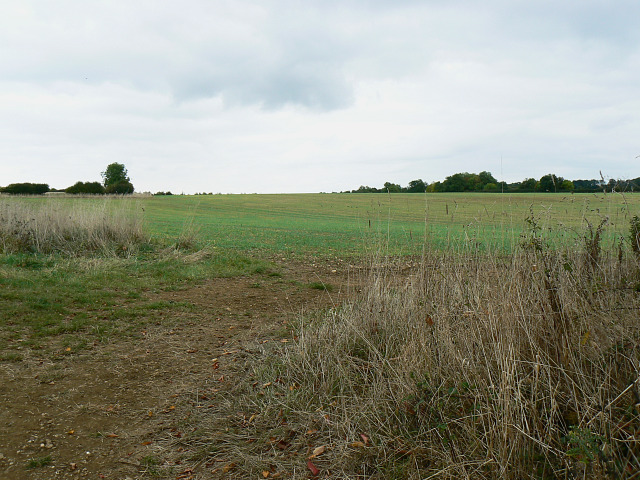 Farmland near Bridewell Farm Cottages, East End, Witney