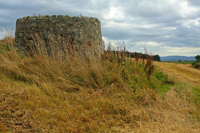 Drum Stone enclosure