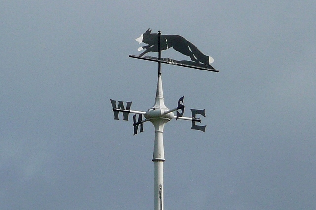 Weather vane at the golf club