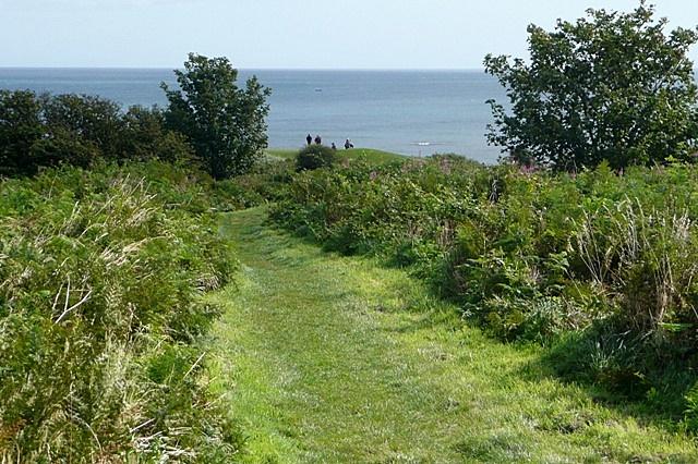 Coastal path north of Alnmouth