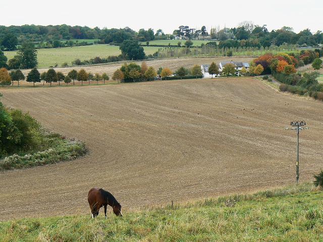 Field, east of Bridewell Farm, East End, Witney