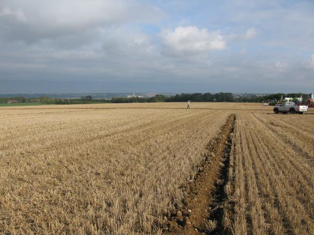 Field of stubble at Merton Farm