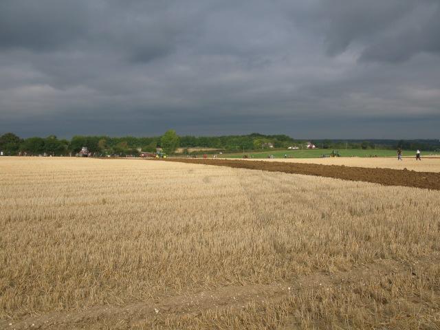 Looking W towards Iffin Lane from fields on Merton Farm