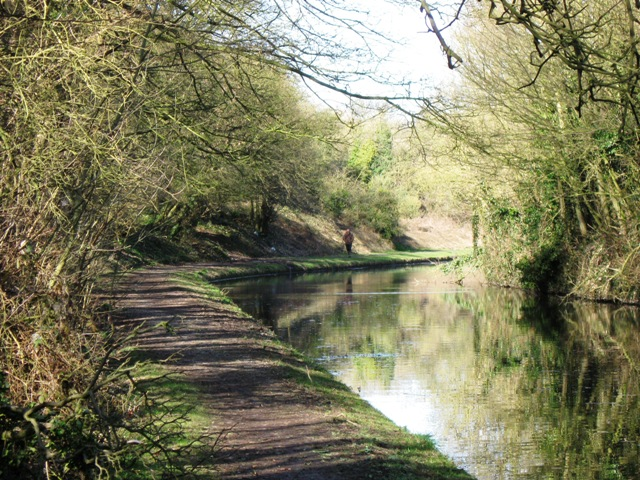 Grand Union Canal: Tring Cutting (North)
