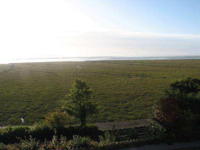 Salt Marsh at Grange-over-Sands