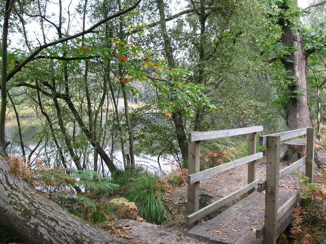 Bridge at Mill Pond