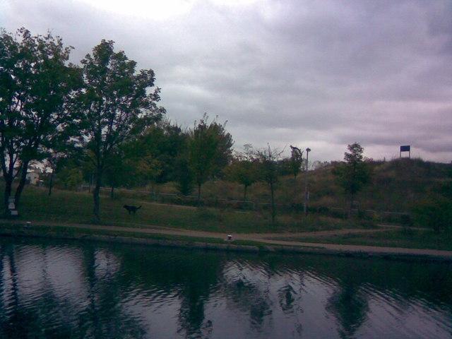 Footpaths in Mile End Park