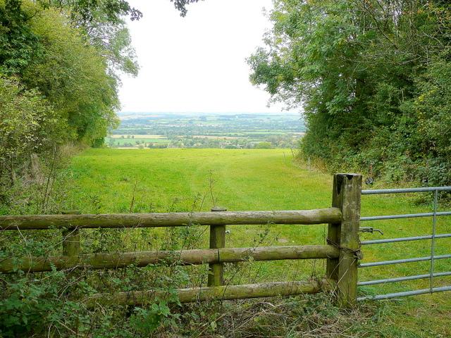 Pasture near Wyck Beacon