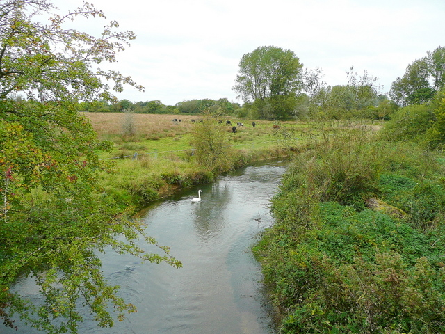 River Windrush at New Bridge 1