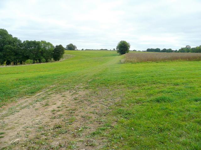 Cotswold downland near Empshill Copse