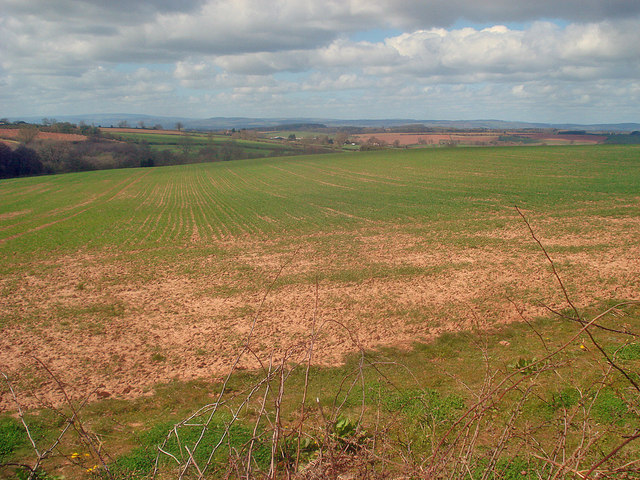 Arable land near Bilfield Farm