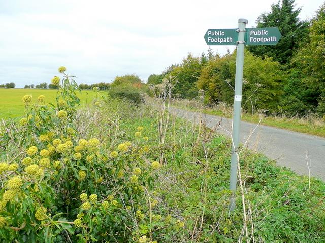 Footpath sign near Eastington