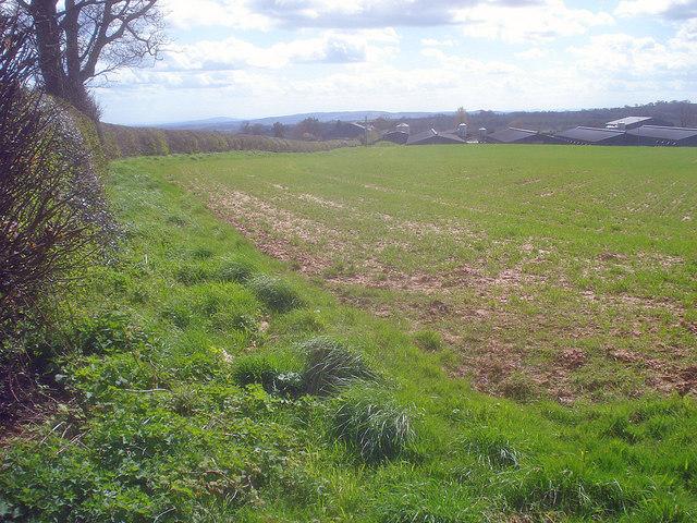 Public footpath to Grendon Manor Farm