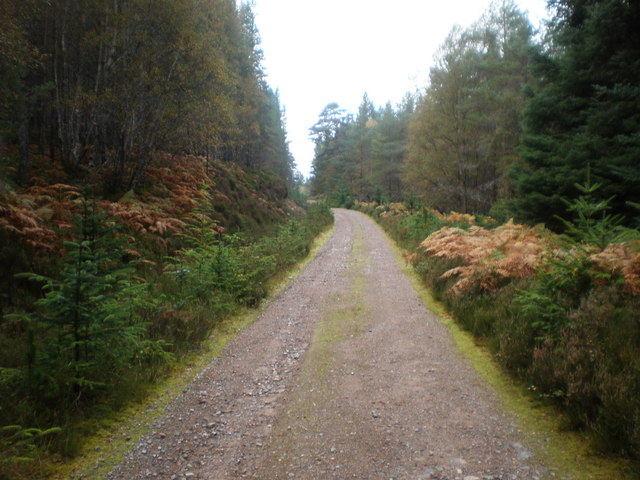 Track going up Inverwick to Fort Augustus Drovers Road