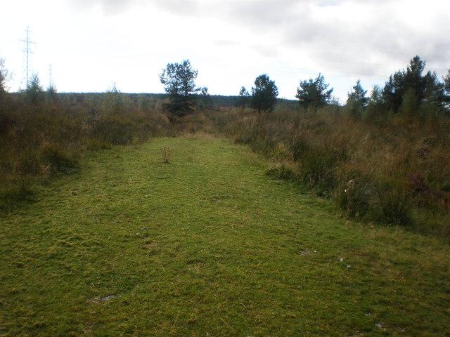 Start of Argo Track following Pylons across Moorland