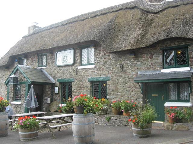The White Hart Inn Llanddarog