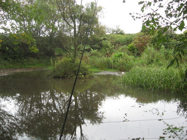 Duckpond at Haroldston Hall